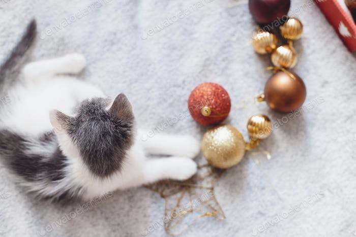 Adorable kitten playing with christmas star and baubles on soft bed, top view. Cozy winter
