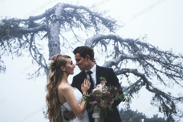 Portrait newlyweds with background of huge tree in the mist.