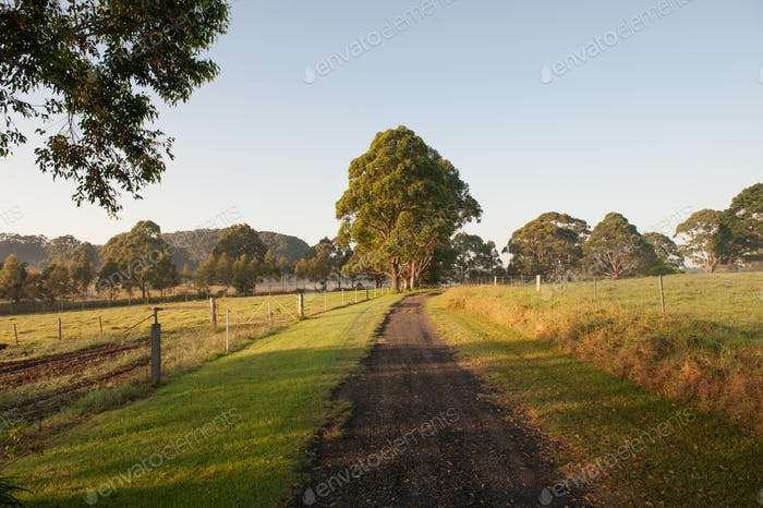 Farm Walking Track