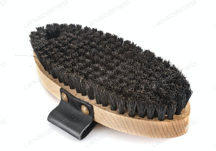 brush for horse