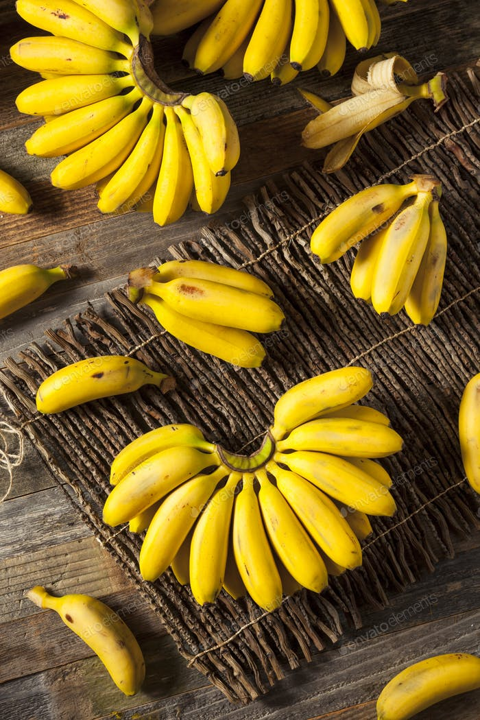 Raw Organic Yellow Baby Bananas