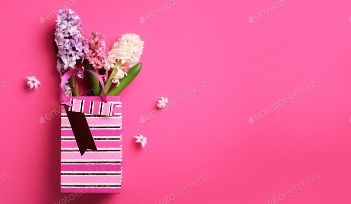 Spring hyacinth flowers in shopping paper bag on pink punchy pastel background. Banner with copy