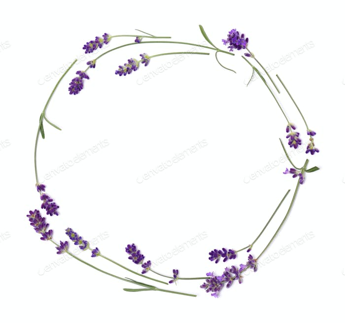 Wreath of lavender flowers