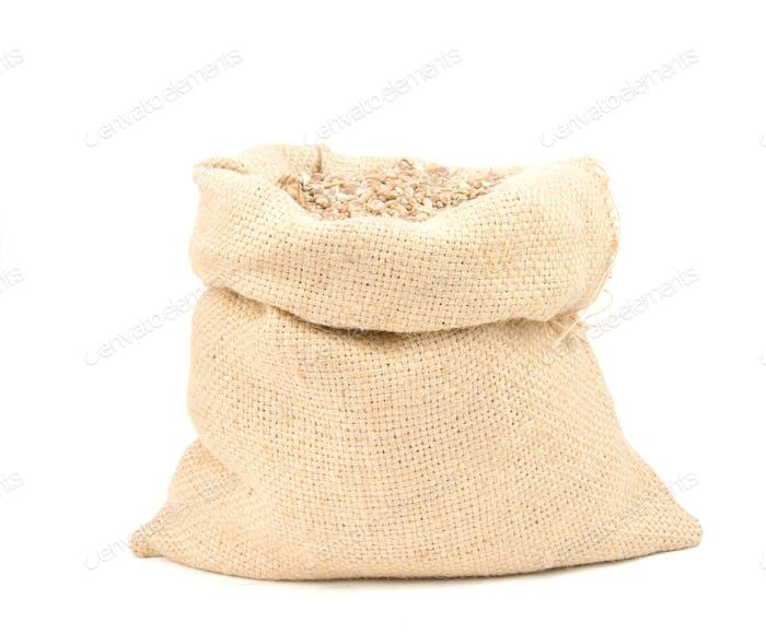 wheat grain in bag