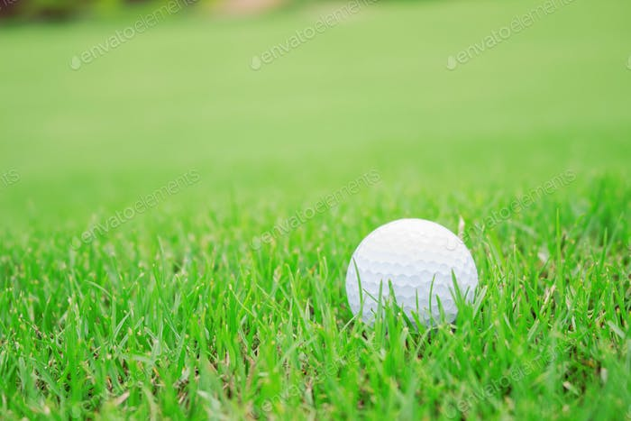 golf ball on green lawn