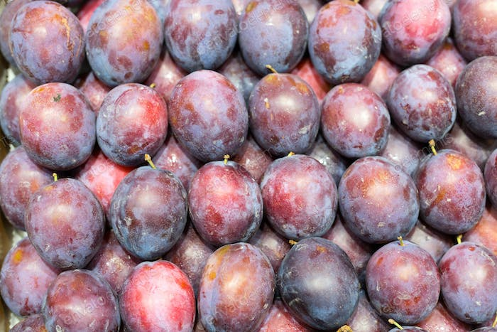 Background of fresh ripe plums