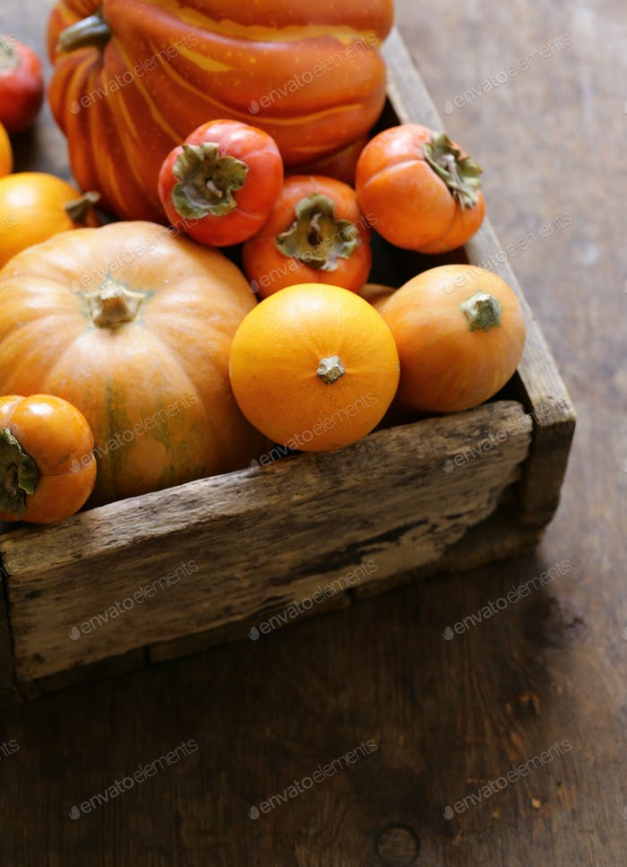 Pumpkins and Berries