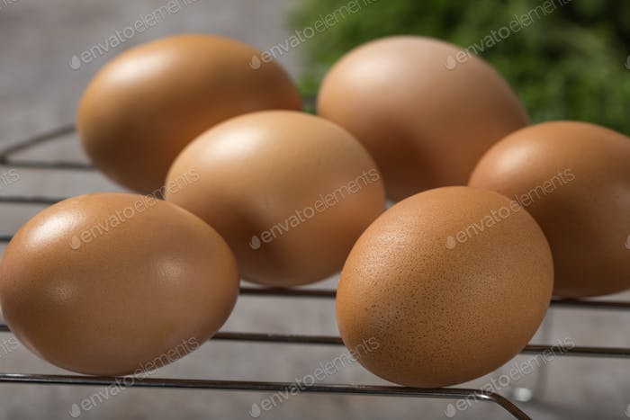 Group of fresh chicken eggs