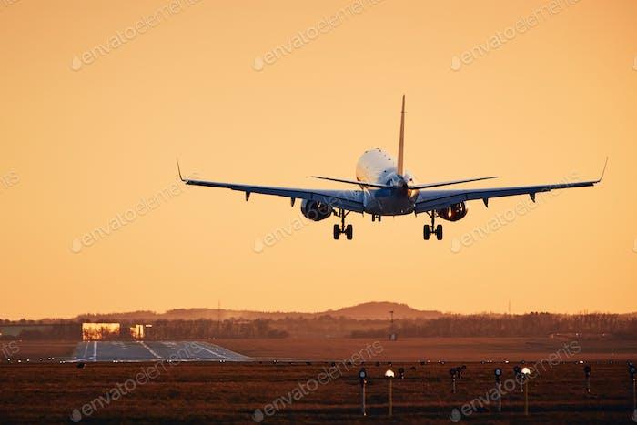 Flugzeug landet auf der Start- und Landebahn