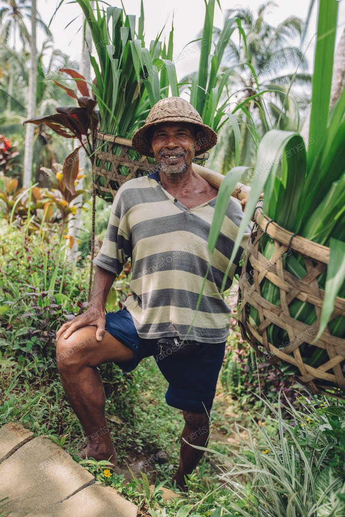Senior farmer standing in his farm