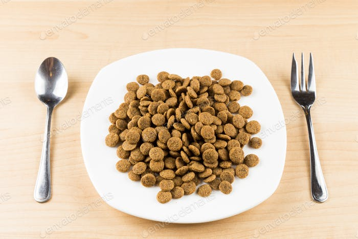 Conceptual of a plate with dog kibbles served on wooden top table