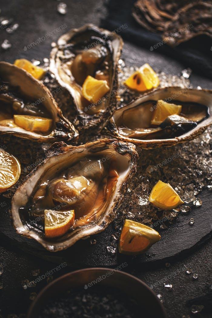 Свежие устрицы из морепродуктов