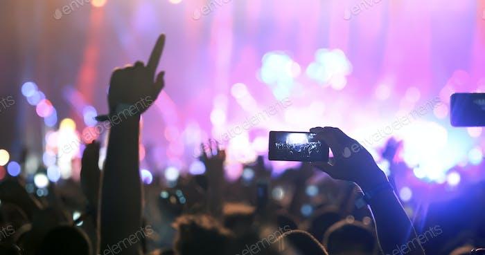 People enjoy concert at festival