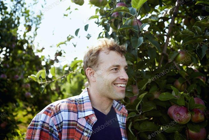 Ein Mann in einem karierten Hemd in einem Apfelbaumgarten.