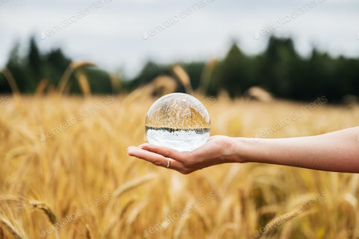 Female hand holding clear crystal ball with nature reflecting in