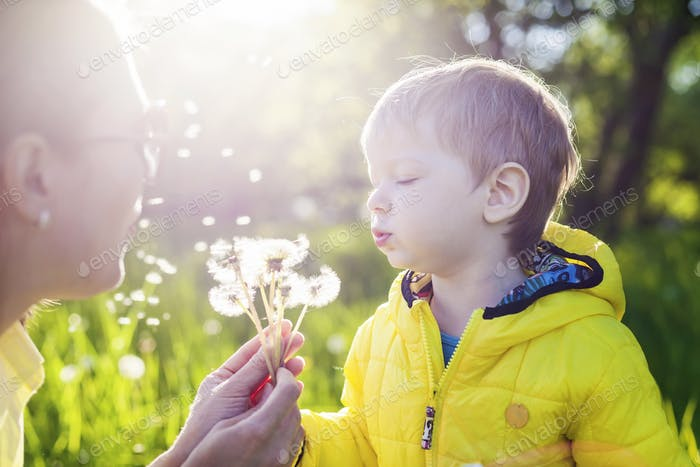Cute toddler boy and his mother blowing dandelions