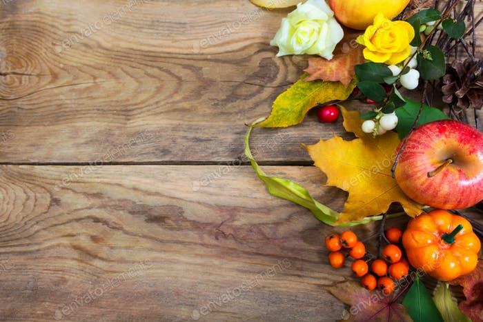 Thanksgiving background with apple, leaves, rowan