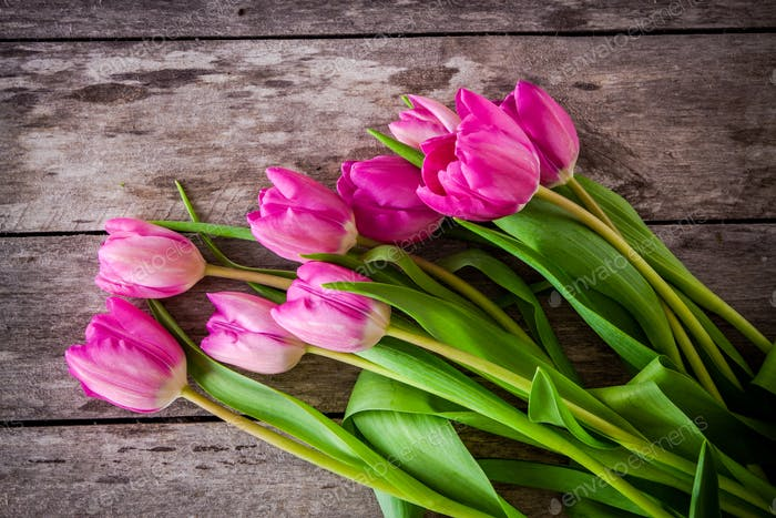 bouquet of bright pink tulips on a wooden background