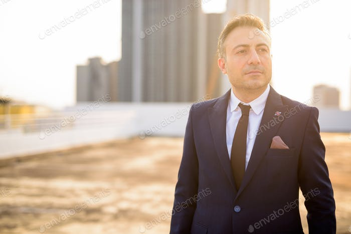 Mature handsome businessman in suit against view of the city