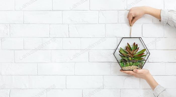 Mini glass florarium in woman's hands, copy space
