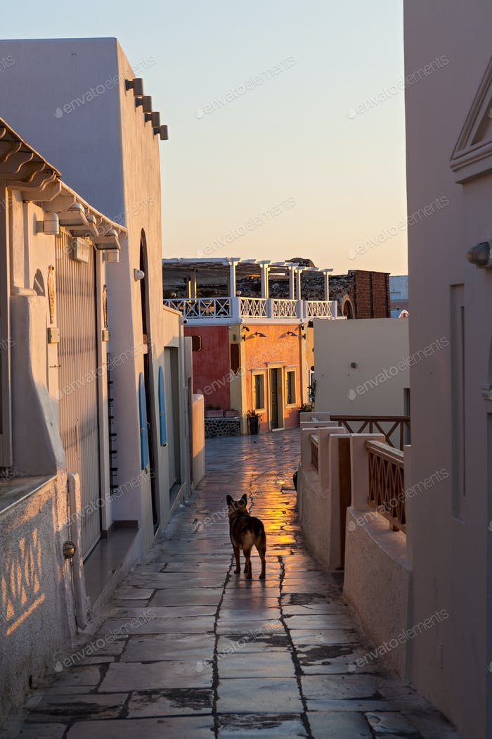 Dawn on the streets of Santorini