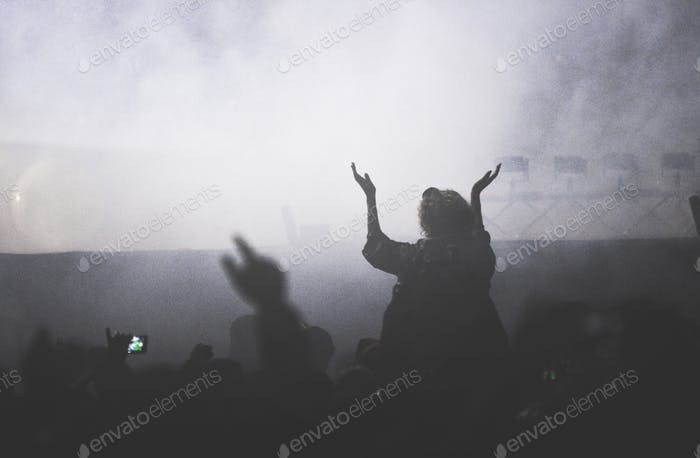 Crowd partying at a music concert, audience with raised arms