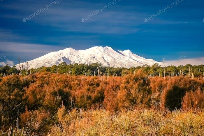 Vulkan Ruapehu