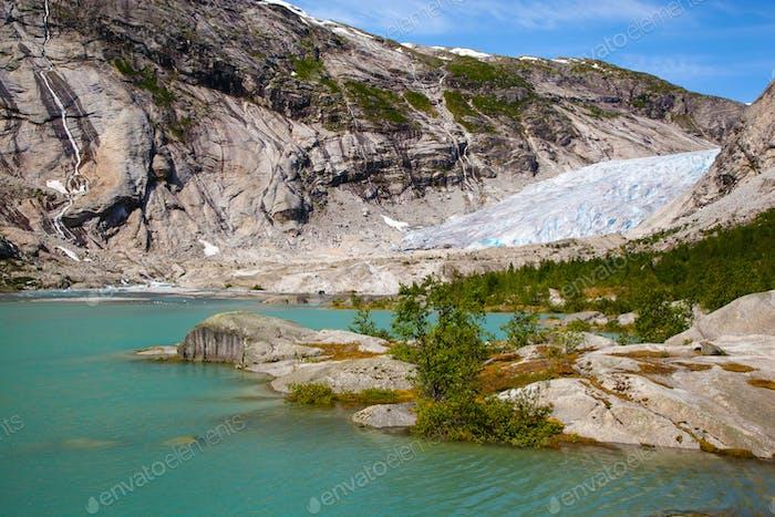 Nigardsbreen Gletscher im Sommer, Norwegen