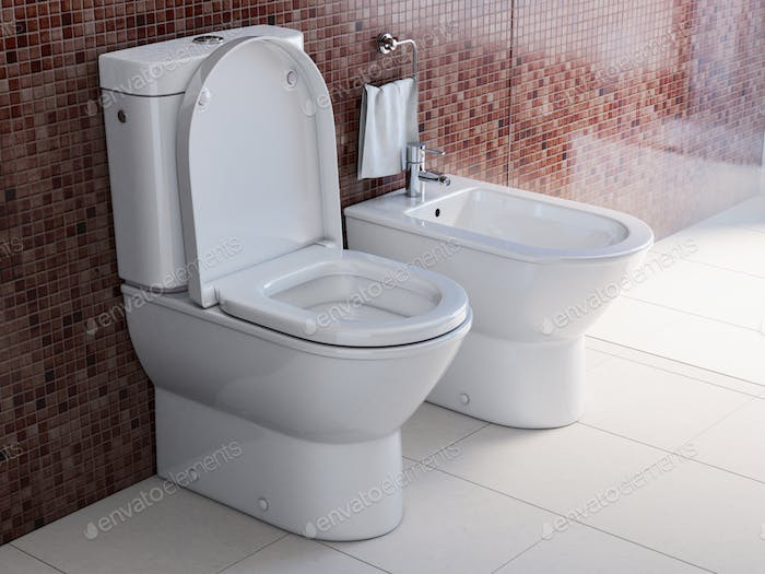 Toilet bowl and bidet in the modern bathroom.