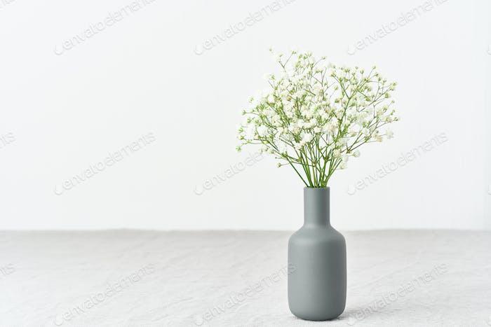 Gypsophila blüht in einer Vase. Weiches Licht, skandinavischer Minimalismus,