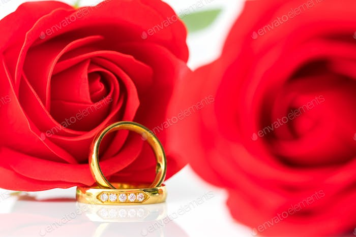 Close up Red roses and gold rings on white_-10