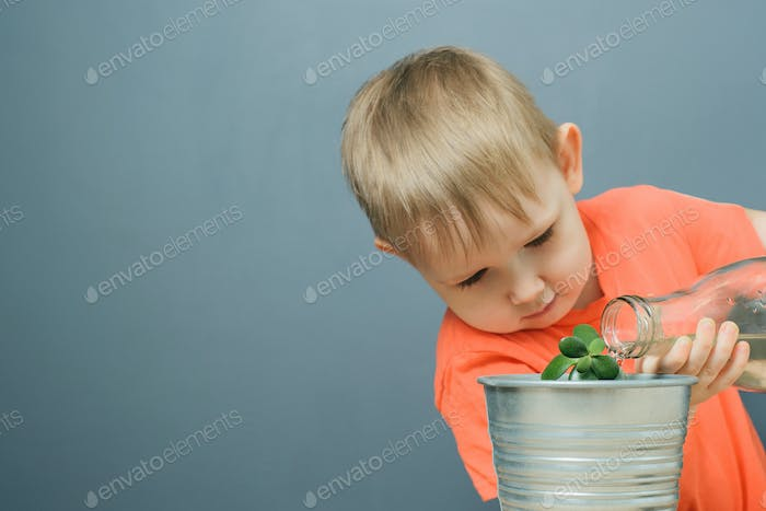 european blond boy child watering young money tree plant