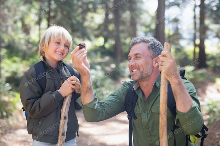 Fröhlicher Vater und Sohn Blick auf Tannenzapfen im Wald