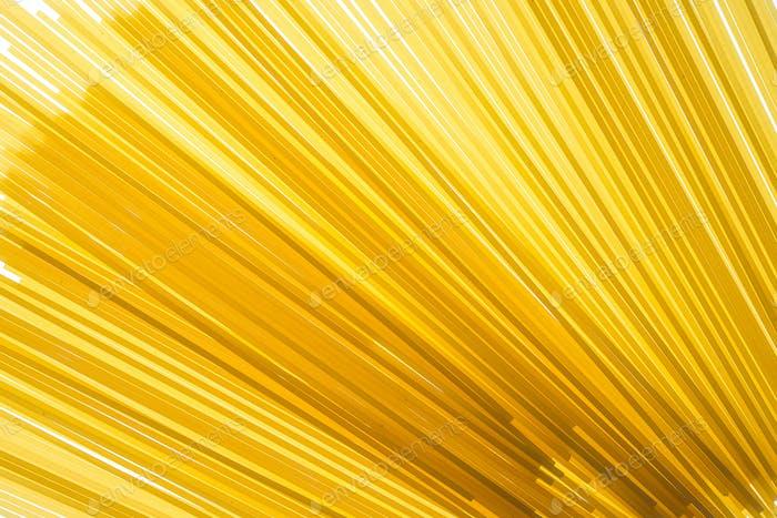 Raw spaghetti pasta