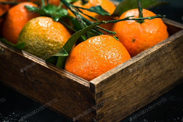 Tangerines or clementines in wooden crate