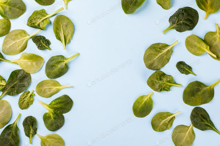 Spinach Leaves of the Green Fresh.Food or Healthy diet concept.
