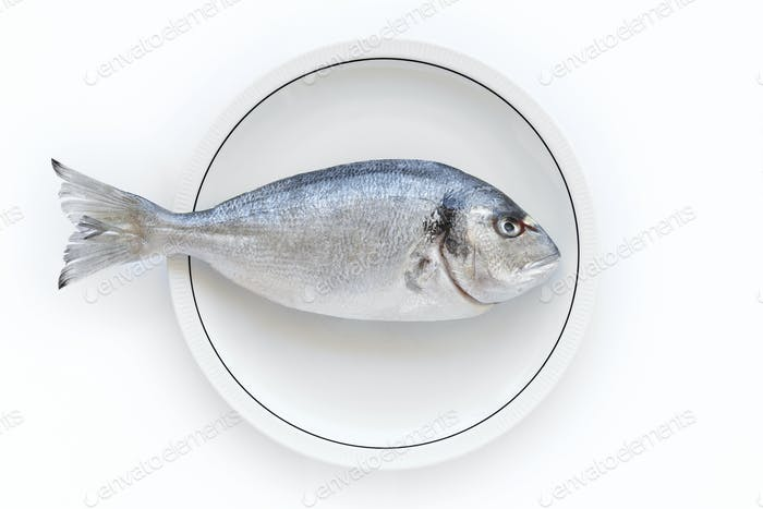 Gilthead fish over a white dish. Healthy and fresh cuisine