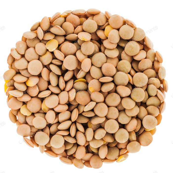 Lentils Circle Isolated on White Background