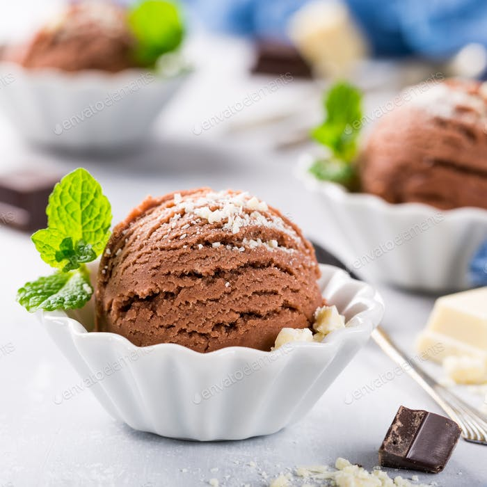 Chocolate ice cream in white bowl.