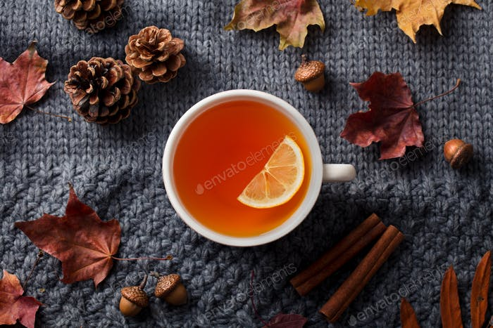 Tea Cup with Autumn Leaves. Grey Background. Top view.