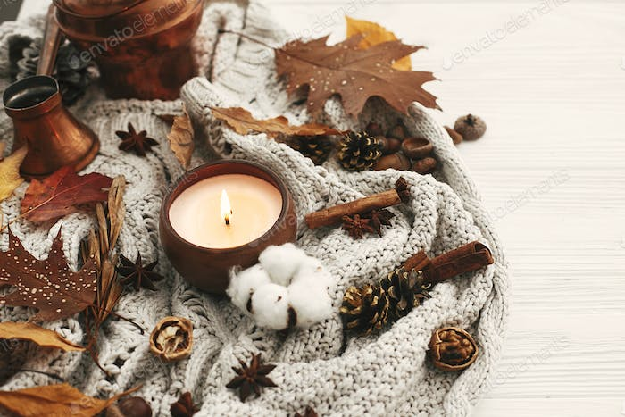 Hygge lifestyle. Candle with berries, fall leaves
