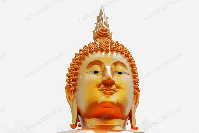 Buddha head on white background