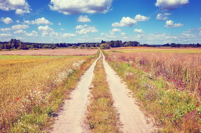Vintage stylized picture of a countryside road