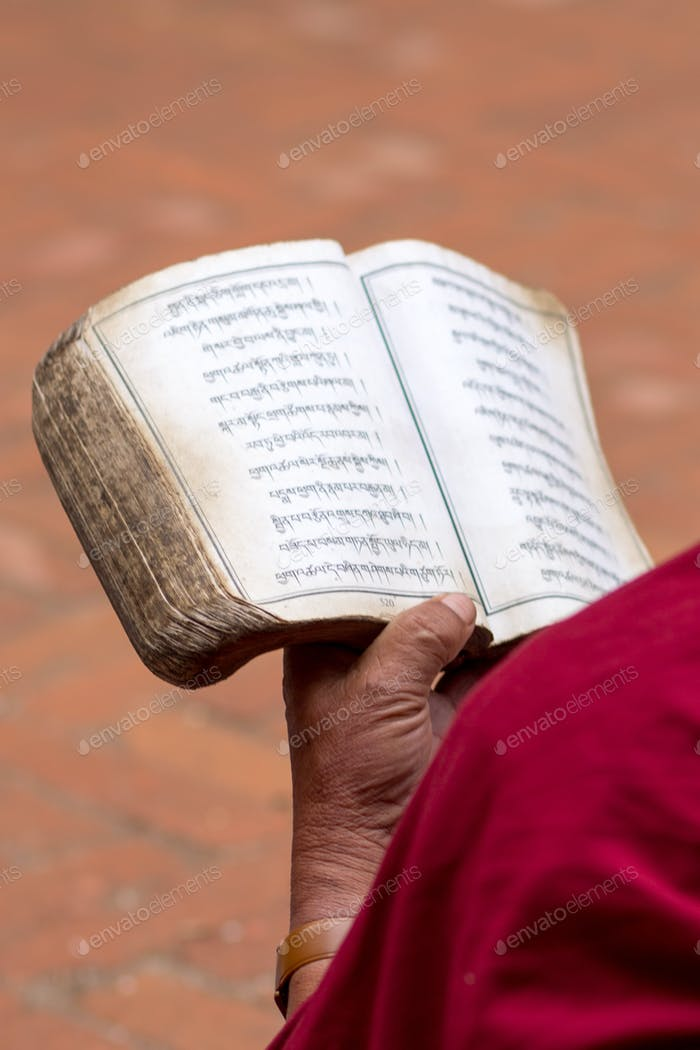 Detail of a Monk reading religious old book