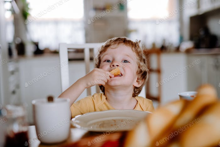 A front view of a toddler boy eating at home