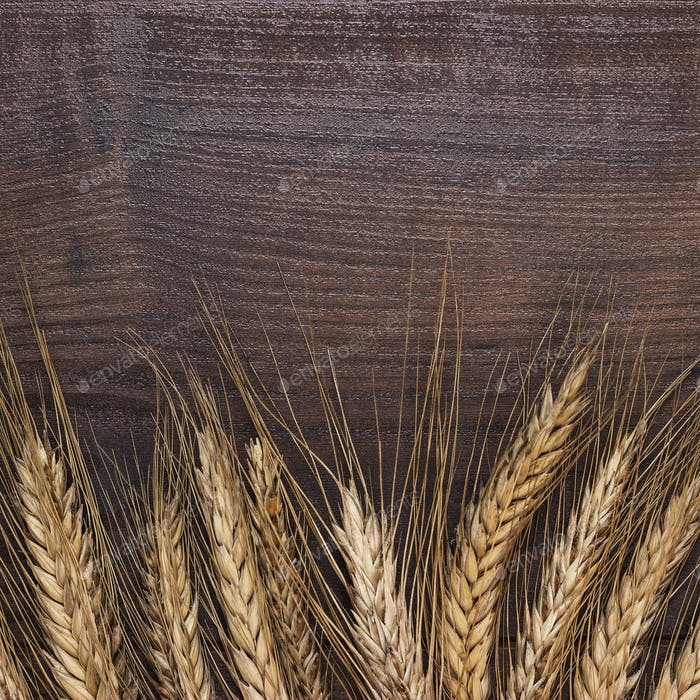 Ears Of Rye On Wooden Background