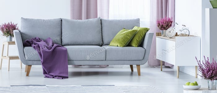 Grey couch with purple blanket and green pillows in real photo o
