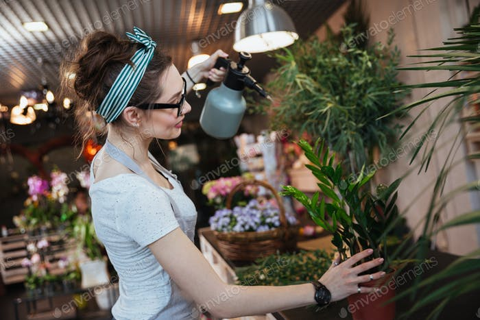 Woman florist watering plants with water sprayer in flower shop