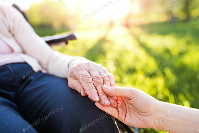 Granddaughter holding hand of grandmother in wheelchair in spring nature.