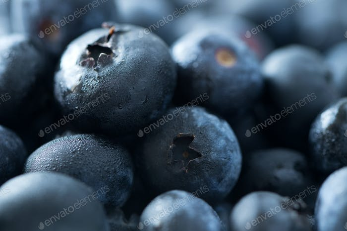 Fresh blueberries background with mist